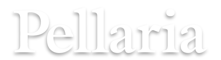 Kellys of Cornmarket Wexford Ireland Pellaria